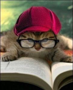 nerdy-cat-names-2