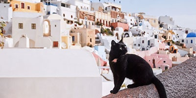 greek-cat-names-sm